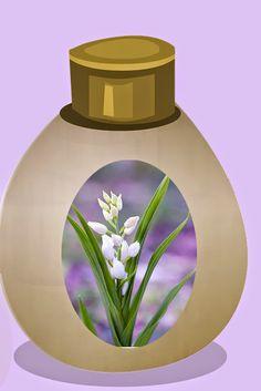 Remèdes naturels de mamie, beauté et santé, par les plantes: Recette de crème anti-rides aux lys blancs, miel e...