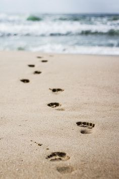 Our memories of the ocean will linger on, long after our footprints in the sand are gone - Anon