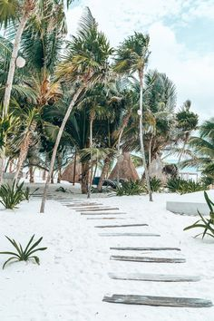 If you crave all things boho chic, a day trip to Tulum should be on your list. Between the unique hotels and the tranquil beach vibes, it's an oasis that feels straight out of a… Beach Aesthetic, Travel Aesthetic, Aesthetic Photo, Places To Travel, Places To Go, Beach Please, Beach Wallpaper, App Wallpaper, Destin Beach