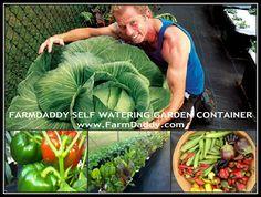 Garden Container
