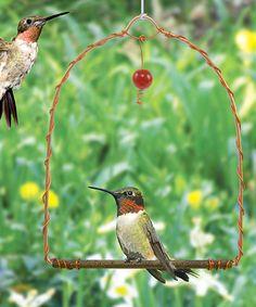 Another great find on #zulily! Hummingbird Swing #zulilyfinds