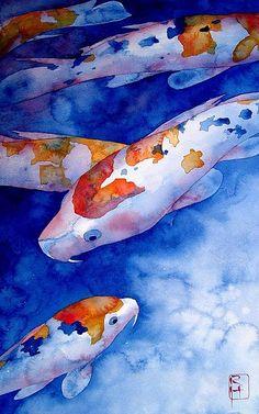 Browse through images in Robert Hooper's KOI collection. Watercolor originals of koi fish Watercolor Fish, Watercolor Animals, Watercolor Paintings, Fish Paintings, Mermaid Paintings, Watercolors, Koi Art, Fish Art, Fish Fish