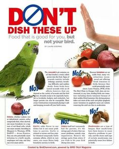 Unsafe foods! (I personally disagree with tomatoes being on this list)