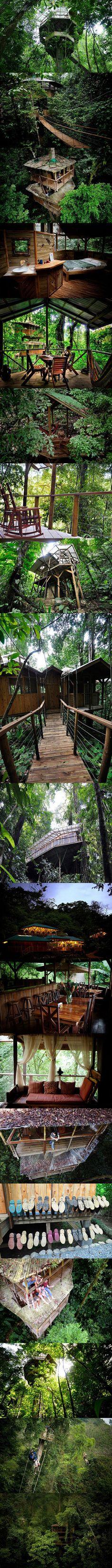 A fascinating look at Finca Bellavista, a real-life Star Wars Ewok village in Costa Rica.
