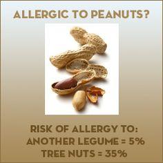 Food Allergies & Cross-Reactivity  Cow's milk/goat's milk 90%  Peanuts/other legume 5%  Peanuts/tree nuts 35%