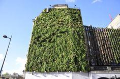 """Cały Londyn ekscytował się targami Chelsea! Targi Chelsea Flower Show są niebywałą okazją do podejrzenia trendów panujących w ogrodnictwie. Nagradzane ogrody najbardziej znanych specjalistów, cała gama roślin oraz elementów z pogranicza sztuki i designu - takie są londyńskie targi. Redakcja """"Mojego Pięknego Ogrodu"""", """"Przepisu na Ogród"""" oraz """"Kocham Ogród"""" szukała na wystawie inspiracji do kolejnych materiałów, efekty poszukiwań zobaczycie w galeriach na naszym profilu Pinterest."""