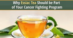 Conventional cancer treatments increase the body's toxic load and they destroy the individual's immune system. Essiac tea, on the other hand, has shown the ability to strengthen the immune system and improve its ability to respond to infection. It also helps the body to eliminate toxins and provides pain relief which is welcome to anyone suffering from a chronic disease.