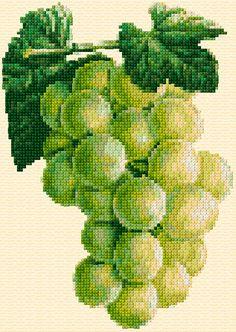Cross Stitch | Grapes xstitch Chart - free