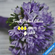 Fresh Picked Lilacs Essential Oil Diffuser Blend - Essential Oil Diffuser - Ideas of Essential Oil Diffuser Essential Oil Scents, Essential Oil Perfume, Essential Oil Diffuser Blends, Essential Oil Uses, Perfume Oils, Doterra, Essential Oil Combinations, Young Living, Diffuser Recipes
