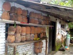 Un rucher familial traditionnel pour abeilles trigones au Mexique