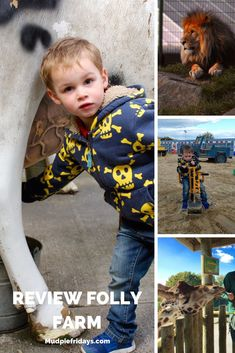 Review Folly Farm– Best Day out in Wales Pirate Adventure, Family Adventure, Adventure Travel, Folly Farm, Ireland With Kids, Animal Experiences, Family Days Out, England And Scotland, Lake District