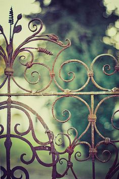 Yes, I know it's a fence.  But those curls would look really cool in a wire pendant with gemstones or beads attached/dangling.
