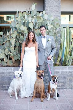 New happy couple with their dogs