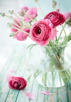 Ranunculus Centerpiece, Ranunculus Wedding, Ranunculus Bouquet, Exotic Flowers, Purple Flowers, Pink Roses, Beautiful Flowers, Pink Peonies, Yellow Roses