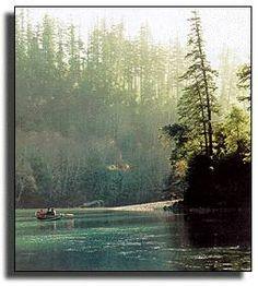 Redwood Bar and Elephant Rock. Travel Info, Time Travel, Places To Travel, Places To See, Travel Destinations, State Of Oregon, Oregon Coast, Beautiful Scenery, Beautiful Places