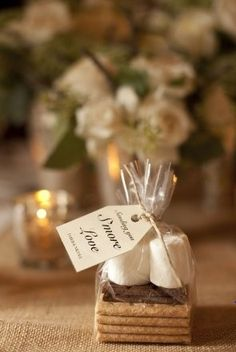 S'mores wedding favor! So cute and inexpensive. I dont know why but I love this!