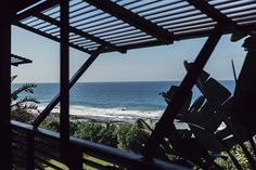 37 is a Sheffield Beach villa on the KwaZulu-Natal Dolphin coast framed and fanned by banana palms and ferns and dramatic strelitzia.