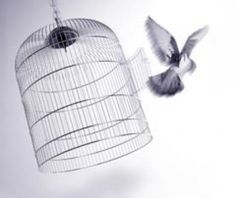 The Bird Cage- A story of God's deep and endearing love.  Ephesians 3:17-19