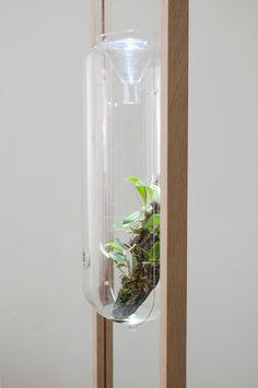 Sanctuaria: Where Design Meets Biology Photo