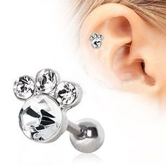 """Animal Paw Cartilage Earring - Body Jewelry for the Animal Lover. This polished metallic beauty features a simple and chic Paw design, steel is securely fit with brilliant Cubic Zirconium. Each of the toes and the large paw pad are press fit with CZ that will sparkle day and night. This Paw Earring adds a wild side and subtle elegance.  Thickness : 16GA / 1.2mm Length : 1/4"""" / 6mm Material : 316L Surgical Steel and Cubic Zirconium- Purchase at FashionHut.net #fashionhutjewelry"""