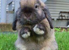 I wants to hug you!!