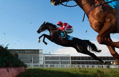 Sanctuaire with Ruby Walsh on board take an AMAZING huge leap at a fence #cheltenham2013