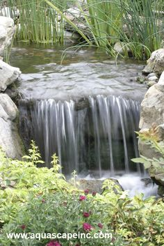 Aquascape Your Landscape: A Boring Backyard is Transformed with Refreshing Pond and Waterfalls