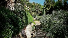 Vídeo de los Jardines de Puerta Oscura, Málaga.