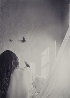.The butterfly does not live to eat and grow, only lives to love, and this is wrapped in a wonderful dress ... E 'is an emblem of the ephemeral both of what lasts forever ... It 'a symbol of the soul. H. Hesse