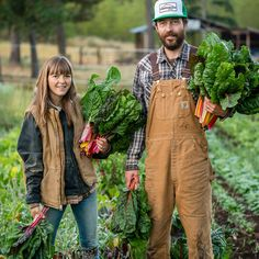 Here's how to find & join a vegetable CSA (Community Supported Agriculture) and 5 tips for getting the most out of your CSA veggies. Healthy Cooking, Healthy Meals, Healthy Eating, Healthy Recipes, Food Tips, Food Hacks, Summer Squash Casserole, Parmesan Roasted Cauliflower, Food Policy