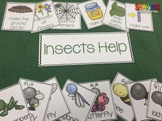 How Do Insects Help Us? Charts, Printables, and Sorts... You are going to love this!