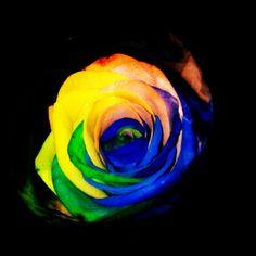 cadeau de gay pride de mon amoureux <3