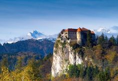 Private tours Slovenia,custom made tours to must see slovenian tourist attractions Bled,Postojna,Skocjan
