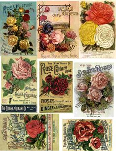 decoupage paper collage sheets roses vintage pink red yellow seed packets