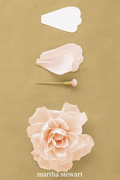 To create this crepe paper peony, use 35 petals and a button stamen, which you can download by visiting our website. First, shape petals to cup inward slightly, pleat base of each petal; pinch folds in place. Attach to stamen, positioning innermost petals low, with midpoints at stamen's head; raise each subsequent ring of petals slightly. Curl tips of petals inward. #marthastewart #crafts #diyideas #easycrafts #tutorials #hobby