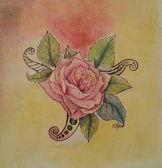 Rosa  en lápiz de color y pluma