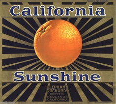California Sunshine Oranges - Crate advertisement.