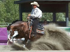 EQUINEFEATHER LLC Horse training, horseback riding lessons, and Equine Assisted Learning sessions offered in the Eastern valley of Arizona Cowboys And Angels, American Quarter Horse, Quarter Horses, Reining Horses, Horse Tail, Horse Saddles, Western Saddles, Western Riding, Barrel Horse