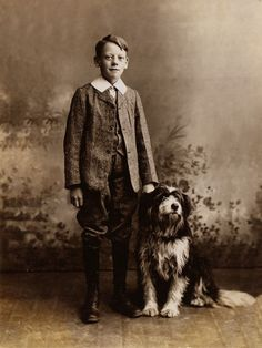 Bearded Collie Boy and His Dogs