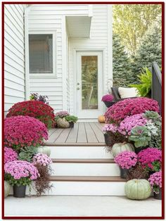 Fall porch with shades of purple mums and pale pumpkins - Diy Poject Ideas Front Door Colors, Front Door Decor, Front Porch, Fall Home Decor, Autumn Home, Purple Mums, Porch Steps, House With Porch, Garden Pests