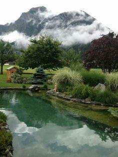 Natural Swimming Pool - Pond