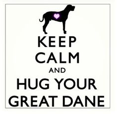 Hug your #greatdane  #dogquotes