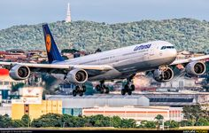 Lufthansa Airbus A340-642 D-AIHY on final approach to São Paulo-Guarulhos, March 2016. (Photo: Ricardo Hebmüller)