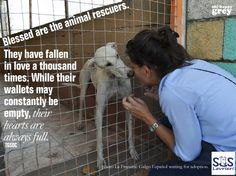 Great words and so true! Rescue a pet, expand your heart!