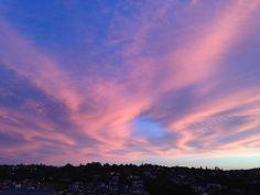 Sunset, Auckland. December 2014.
