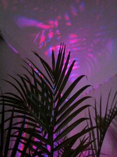 Aesthetic dark wallpaper, wallpaper backgrounds, iphone wallpaper, violet a Dark Wallpaper, Tumblr Wallpaper, Wallpaper Backgrounds, Aesthetic Backgrounds, Aesthetic Iphone Wallpaper, Aesthetic Wallpapers, Purple Aesthetic, Retro Aesthetic, Photo Wall Collage