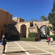 Página web oficial del Real Alcázar de Sevilla. Información sobre horarios, reservas, historia, arquitectura, actividades y publicaciones.