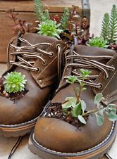 Find Your Repurpose: Green Crafts Projects – Indoor Garden Nook Find Your Repurpose: Green Crafts Projects Repurpose worn-out work boots into a cute planter. Check out the article for more ways to repurpose old items into fun crafts! Garden Nook, Garden Art, Balcony Garden, Garden Design, Garden Kids, Garden Cottage, Garden Living, Succulents In Containers, Succulents Garden