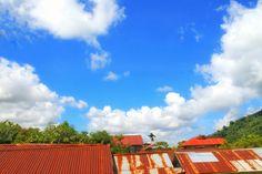 Sunny Day.🌞
