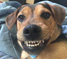 Maggie Smiling